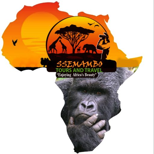 Uganda Gorillas Trekking